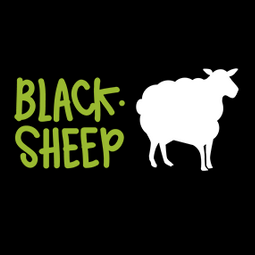 Black Sheep - Rental of converted vans in the Basque Country